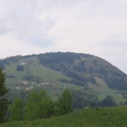 Stari vrh