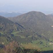 Pohodniška pot Mladi vrh – Koprivnik